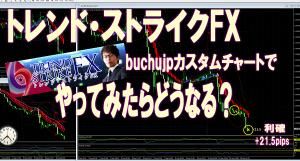 toresuto-fx-buchujp300